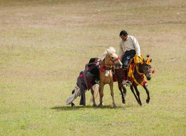 Nagchu Horse Racing Festival Tour