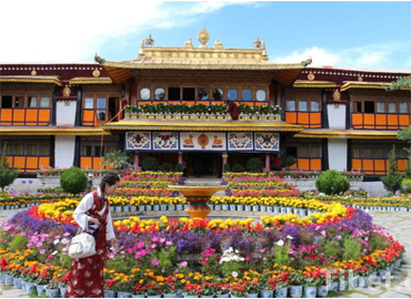 Takten Migyur Potrang built in 1954 by 14th Dalai Lama is called the New Palace