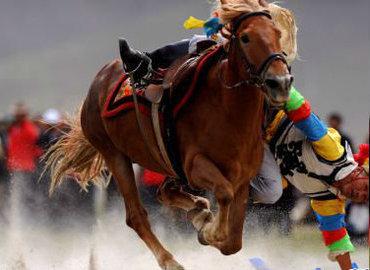 Gyantse Horse Racing Festival