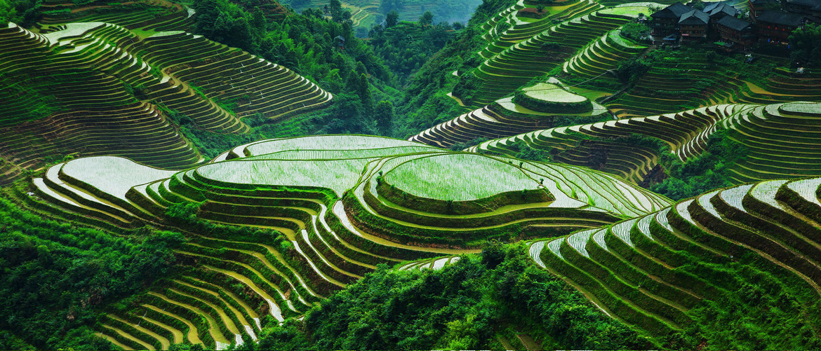 The terraced field in Guilin is very famous.