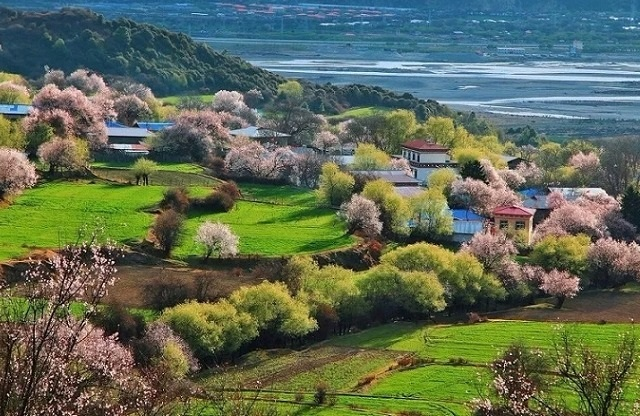 During March and April, you will have chance to watch the