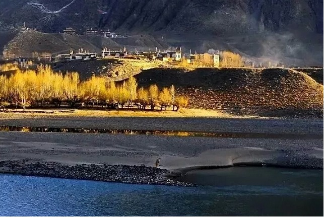 Enjoying