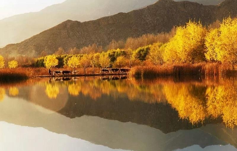Fall in Tibet