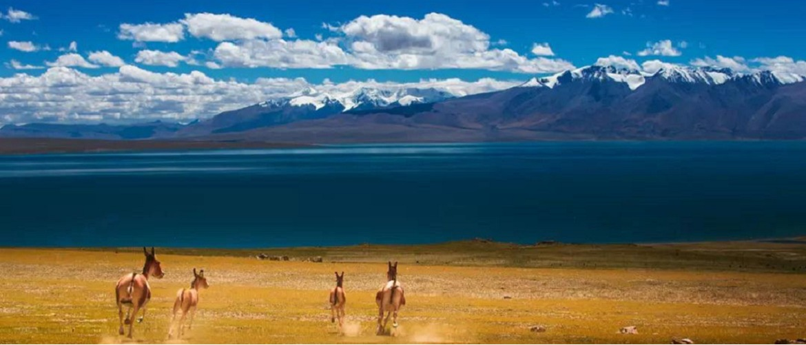 Lake Namtso is regarded as the most beautiful lake in Tibet.