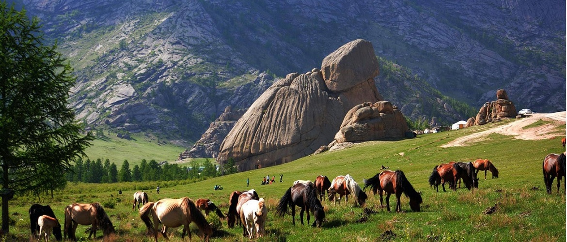 Terelj National Park is a good place to experience the natural scenery of Mongolia. You can see the beautiful grasslands and forests in the valley.