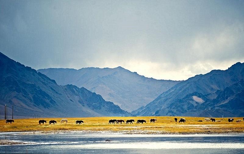 Scenery in Ngari, the most Tibetan area in Tibet.