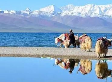 Namtso Lake is the highest saltwater lake in the world.