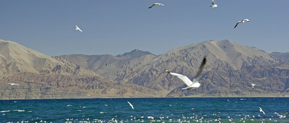 Bird Island in Pangong Tso is a famous tourist attraction in Tibet.