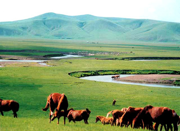 "Qiangtang means ""northern highland"". This prairie located among the Kunlun, Tanggula and Gangdese Mountains."