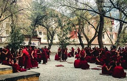 Buddhist debates at Sera Monastery.