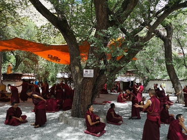 Buddhism debate at Sera Monastery.