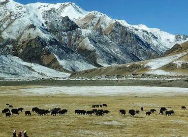 Xián Tibet Train Tour