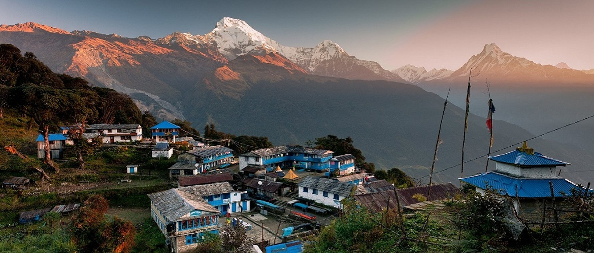 Tadapani is a little village on the way of world's famous Annapurna trekking route.