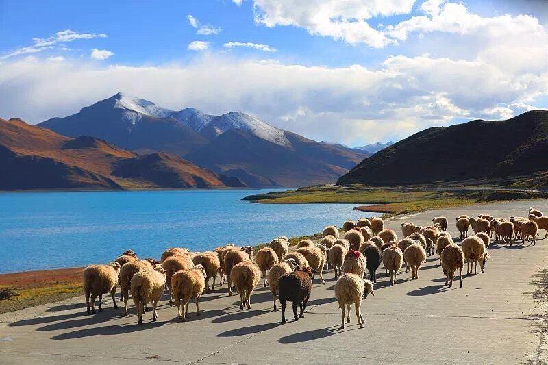 Tibet plateau scenery