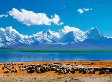 How to plan a trip to Tibet?