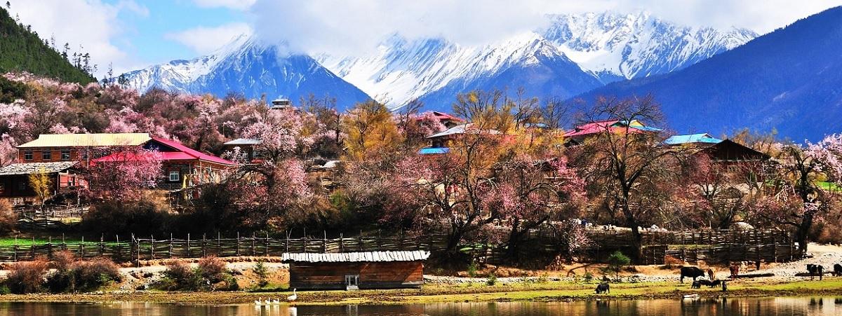 Nyingchi scenery