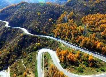 zigzag road.